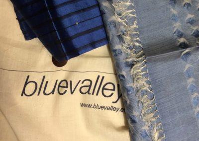 """""""Blue Valley"""" Ausstellung und Performance, Manob Tagore / Nivedita Parhi (2011)"""